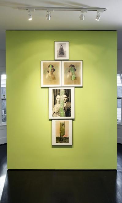 Barbara Levine, Installation View, <em>Cactus Between Us</em>, 2014