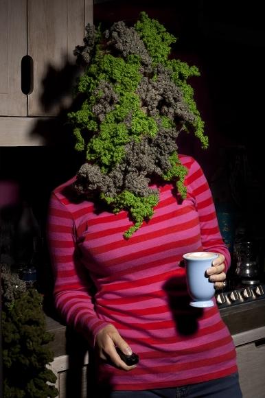 Daniela Edburg, <em>Civilized Moss</em>, 2014