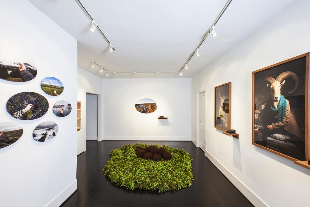 Daniela Edburg, installation view