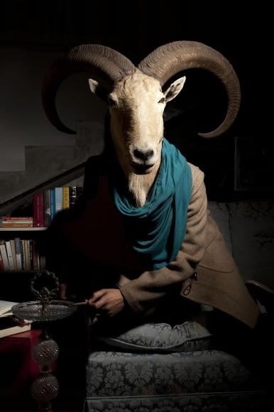 Daniela Edburg, <em>Civilized Goat</em>, 2014